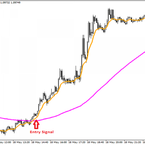 20 Pips a Day Forex Robot